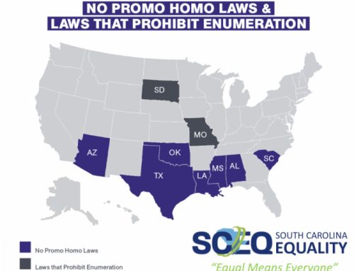 "SC Equality to bring a legal challenge to South Carolina's ""No Promo Homo"" law"